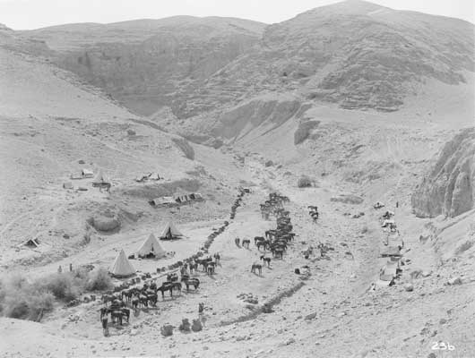 A Squadron, 9th Australian Light Horse Regiment, camped in the Jordan Valley near Jericho, during the summer of 1918 (AWM B00236).