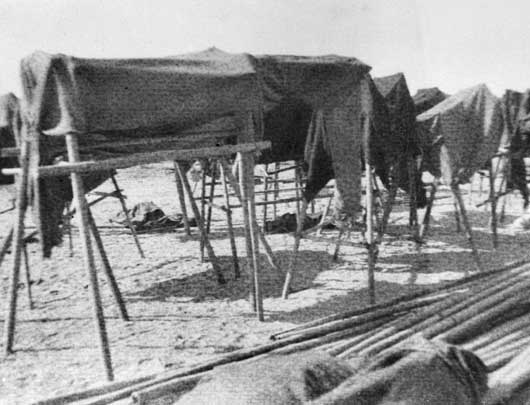 Dummy horses made by Corporal Smith, 6th Light Horse Regiment, in the Jordan Valley (AWM J06264).