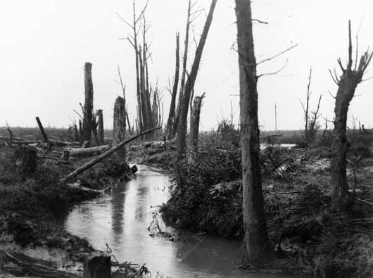 A view of the Douve River, looking towards La Potterie Farm near Messines in Belgium (AWM E01292).