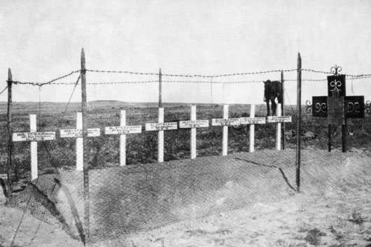 An iron cross and eight wooden crosses erected by the 4th Regiment, Australian Light Horse, over the graves of their fallen comrades (AWM H15569).